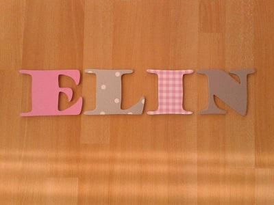 houten letters ELIN