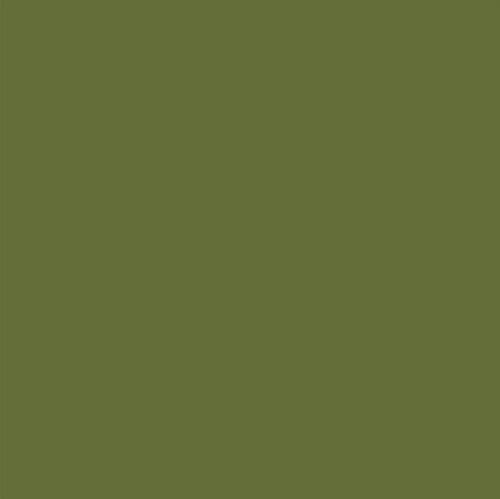 Andijvie-GN023-01